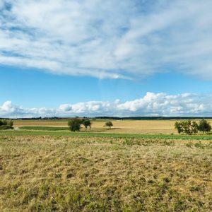 Land in Sicht! 125.000 Euro für Amateurtheater in ländlichen Räumen